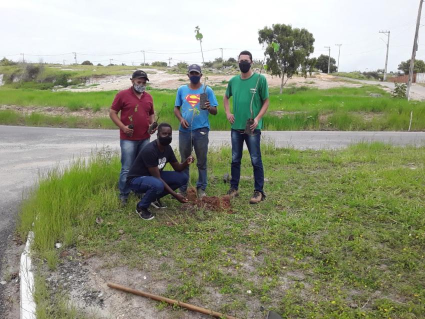 Plantio de mudas nativas na programação pelo Dia da Árvore